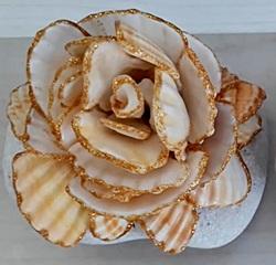 יצירה מצדפים - פרחים מצדפות ים